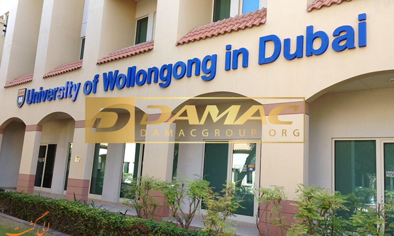 دانشگاه بین المللی دبی